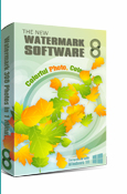 Watermark Software for Business