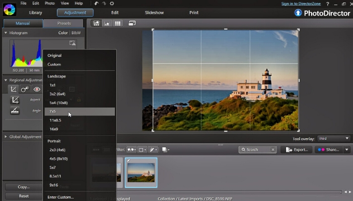 Picture Suite - PhotoDirector 7 Essential